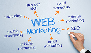 Experto en Marketing Web